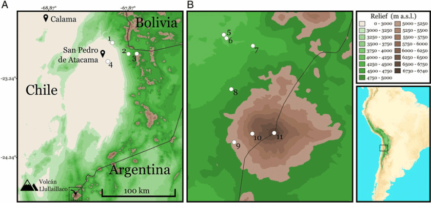 Maps featuring the locations of trapping sites near Llullaillaco (left) and on the volcano itself (right). Maps: Storz et al., 2020.