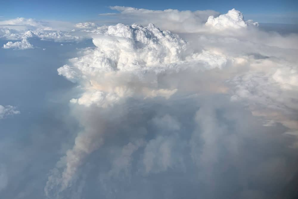 Taken at about 30,000 feet (9 kilometers) over eastern Washington, the smoke plume (gray) feeds the pyrocumulonimbus cloud (white). Photo: David Peterson (U.S. Naval Research Laboratory), public domain, August 8, 2019.