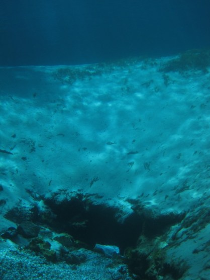 One of Silver Glen's spring vents.