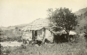 Native hut.