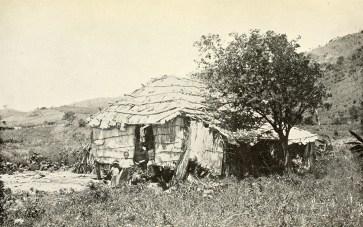 Native hut.