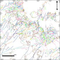 Interpreted faults coloured by orientation