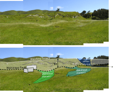 Photo mosaic and interpretation of the Wairarapa Fault scarp at Pigeon Bush. The successive abandonment of streams along the fault scarp provide evidence for periodic dextral fault movement.