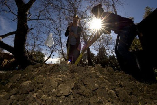 The UCI-led study found that soil integrates carbon far slower than thought, meaning the amount it's capable of absorbing from the atmosphere this century is much less than predicted by current Earth system models. Credit: Steve Zylius / UCI