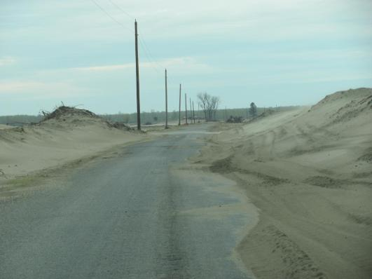 Mississippi River floodwaters deposited many tons of sand on farmland and roads in Dogtooth Bend peninsula when the Len Small levee breached in January of 2016. The sand dunes left behind required graders and snow plows to open the road for local traffic. Credit: University of Illinois