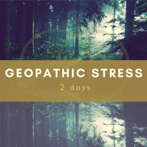 What is geopathic stress