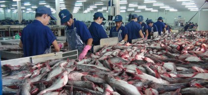 Fishing Frontlines: A Sea Change for Southeast Asia Fish Exports |  Geopolitical Monitor