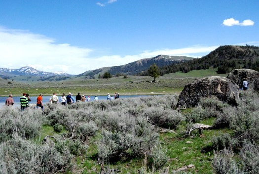 The Junction Butte moraines have an age date of 15.2 +-1.3 10Be ka. Large  boulders of Precambrian crystalline rocks and several ponds typify the morainal surface.