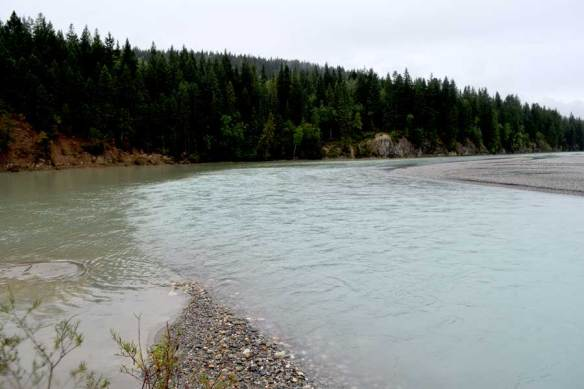 The confluence of the Columbia and Kicking Horse rivers near Golden, B.C.. Note the differnt water colors as the Kicking Horse River flows in from the right side of the photo to mix with the Columbia waters.
