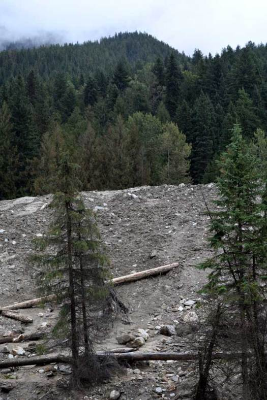 Heather Hill debris flow near Roger's Pass on the Trans-Canadian Highway 1.
