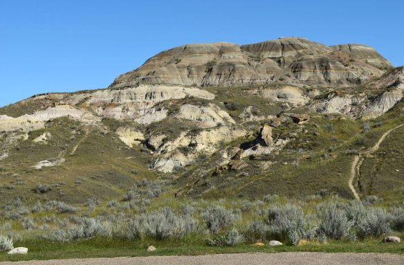 Dinosaur Provincial Park near Brooks, Alberta - the darker colored unit, the Dinosaur Park Formation sits atop the lighter colored, Oldman Formation. Both units are placed within the Cretaceous (Campanian) Belly River Group.