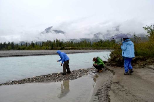 Again at the Columbia/Kicking Horse rivers confluence. We couldn't pass  up a skipping stone contest...