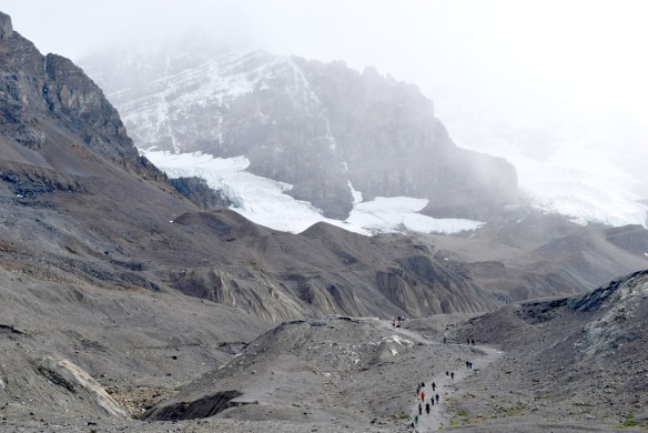 Our intrepid field crew hikes the Athabasca Glacier, one of the six major glaciers of the Columbia Icefield.