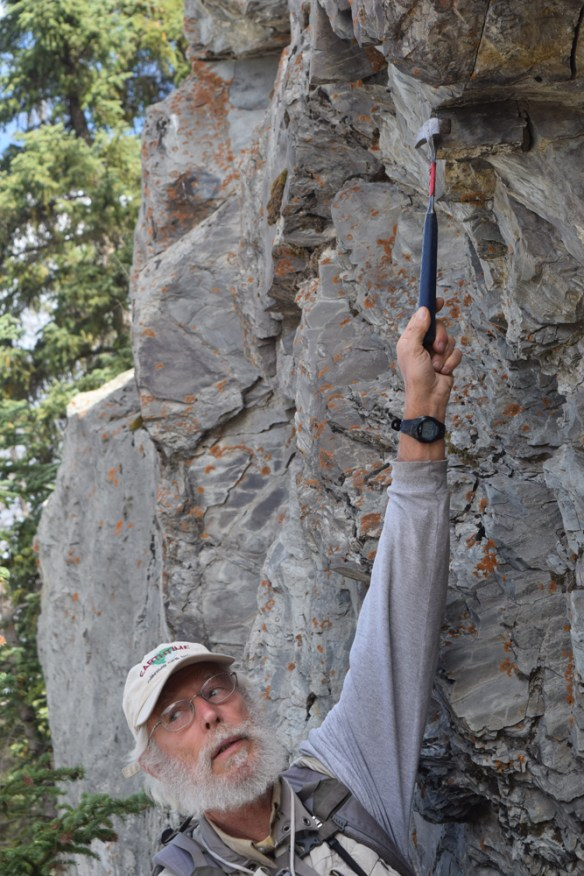 Paul Hoffman explains features of the Neoproterozoic Old Fort Point Formation near Jasper, Alberta.