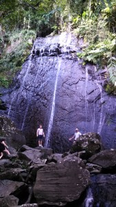 The waters of La Coca Falls drop 85 feet onto the volcaniclastic sandstones of the Tabonuco Formation.