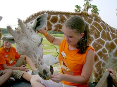 tess and giraffe