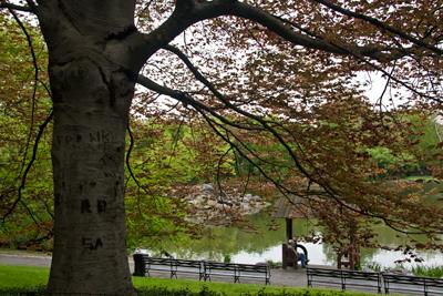 Central Park 3