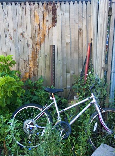 boat yard bike