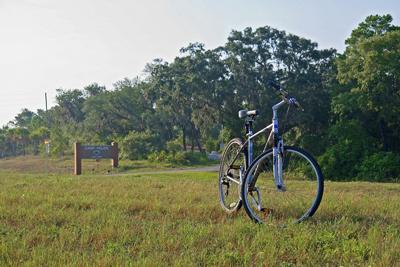 Florida bike