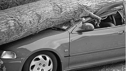 pic-uninsured-motorists
