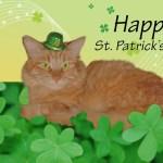 st_patricks_day_card_02b