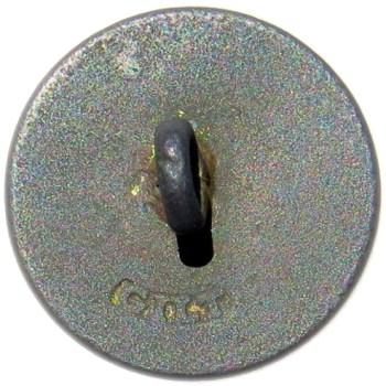 1802-08 South Carolina Navy 22.45mm Gilt Brass Albert's NA 10-B RV 250 Dug in Charleston,SC RJ Silverstein's georgewashingtoninauguralbuttons.com R