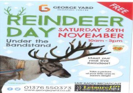 reindeer-day
