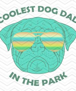 Coolest Dog Dad In The Park 4