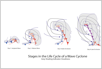 Image result for stages of life cycle of waves