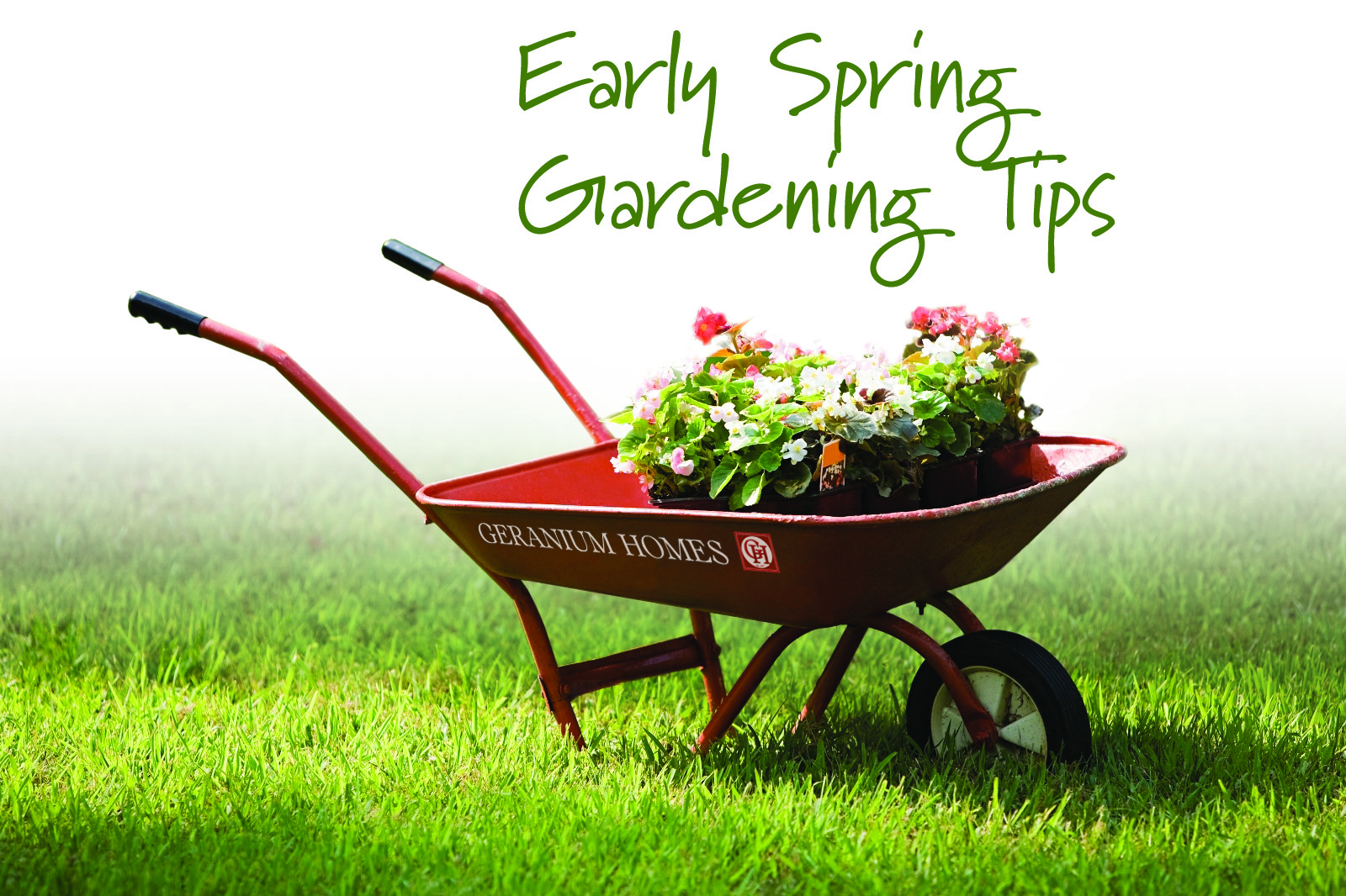 6 Tips for April Gardening - Geranium Blog on Gardening  id=97554