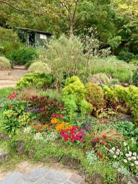 Nunobiki Herb Garden_0578