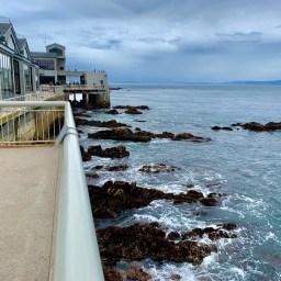 Monterey Aquarium_0234