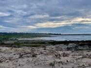 Asilomar Beach_0235