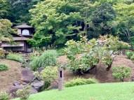 Sankeien Gardens_1029