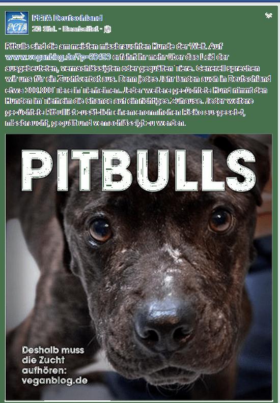 PeTA will Hunderasse ausrotten Screenshot Facebook Seite PeTA