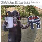 PeTA verliert 560.000 Unterstützer!!!