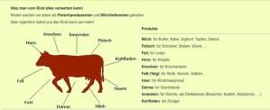 Was so alles aus einer Kuh gewonnen wird - Screenshot schema.at