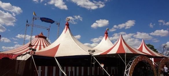 Zirkus klagt gegen Demonstrationsrecht
