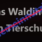 Jens Waldinger verliert Gemeinnützigkeit