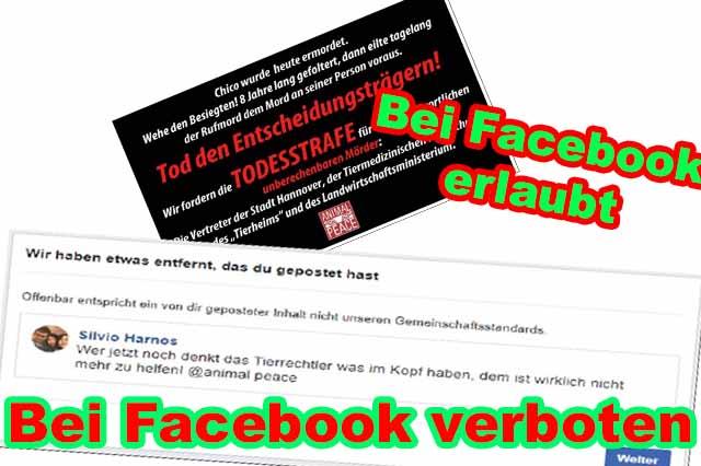 GERATI wird auf Facebook wegen Animal Peace Grafik für 30 Tage gesperrt