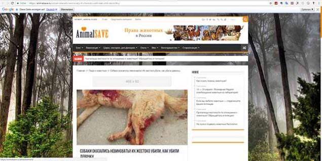 Screenshot: animalsave.ru/sobaki-okazalis-nevinovaty-ih-zhestoko-ubili-kak-ubili-devochku/