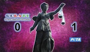 Maaf Mr. Krishna Singh - Mein Gerichtsverfahren