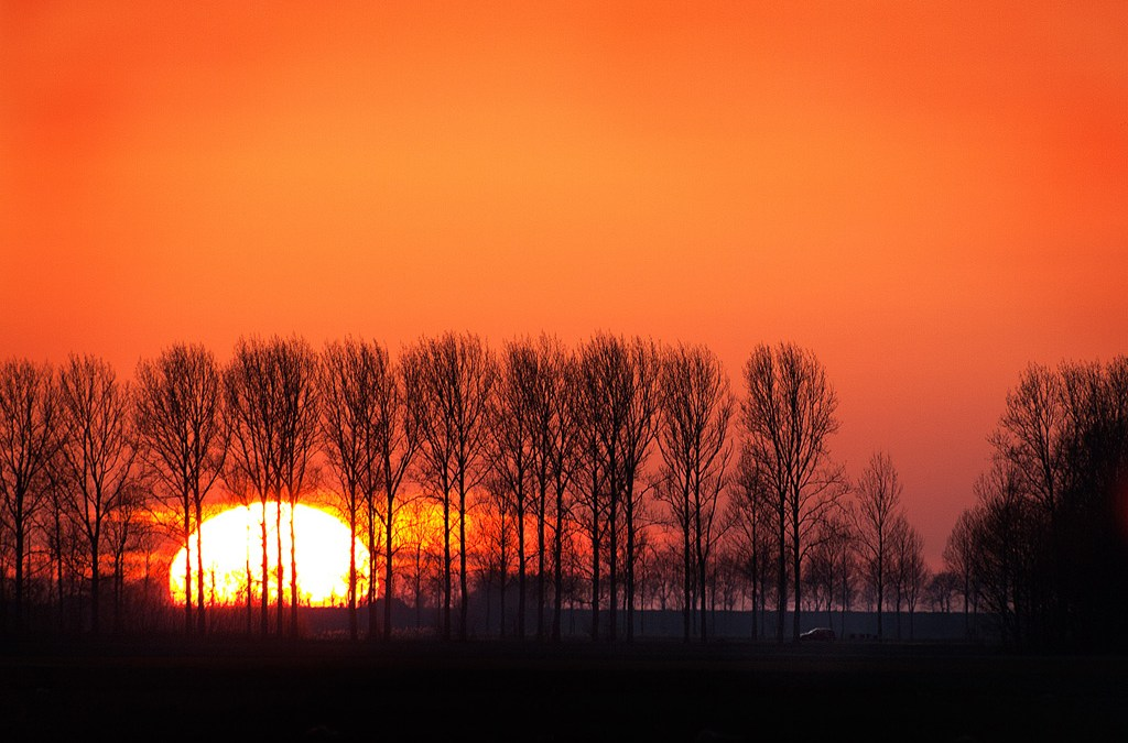 Sunset in the 'Polder'