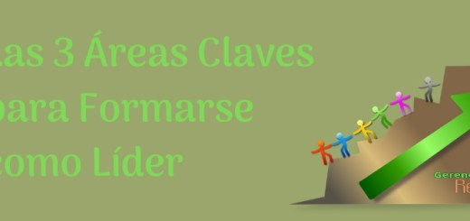 Areas Claves Lider