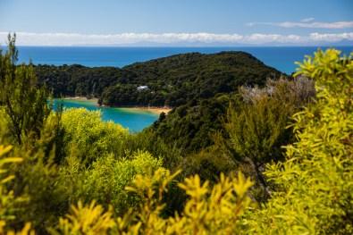 Ein typischer Ausblick im Abel Tasman NP