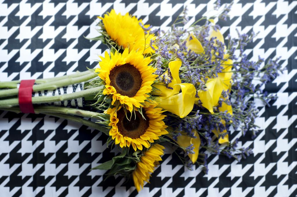 Die Sonnenblume Aktuell Allgemein  %GerhardtBlumen