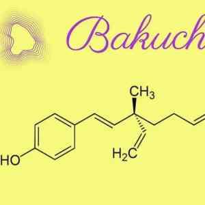 Qu'est ce que le Bukachiol? un Retinol Like? un Phyto rétinol végétal?