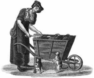 Female cats' meat seller