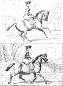 Cantering (Top) and Trotting (Bottom), Author's Collection