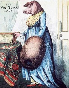 The Pig-Faced Lady, Courtesy of Wikipedia